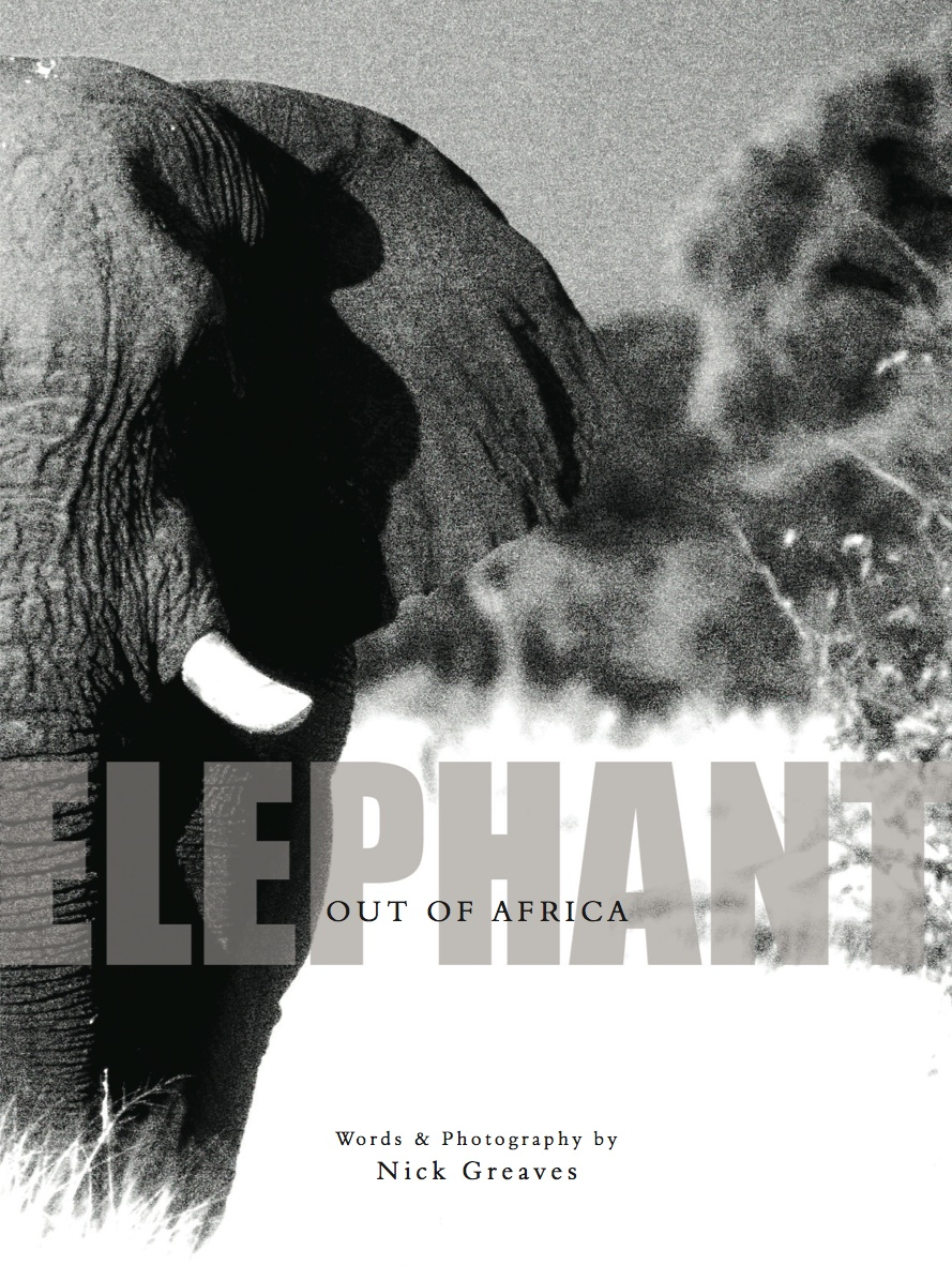 Elephant_-_Out_Of_Africa
